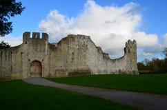 Nietknięty Outerwall dla Desmond kasztelu ruin w Irlandia fotografia royalty free