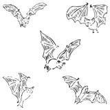Nietoperze w różnych pozycjach Ołówkowy nakreślenie ręką Fotografia Stock