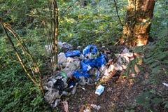 Nieupoważniony wysypisko w lasowym zanieczyszczeniu natura ekologia zła obraz stock