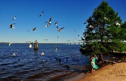 Nieuw Bern, NC: Meisjes die Zeemeeuwen voeden Royalty-vrije Stock Afbeeldingen