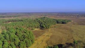 Nieuw bos nationaal park in Engeland van hierboven stock video