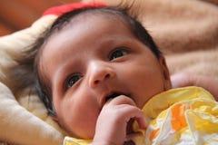 Nieuw - de denkende en zuigende vingers van het geboren babymeisje Royalty-vrije Stock Foto