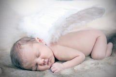 Nieuw - geboren baby Royalty-vrije Stock Foto