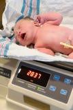 Nieuw - geboren Baby die wordt gewogen Stock Fotografie