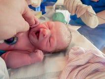 Nieuw - geboren baby in een wieg bij het ziekenhuis royalty-vrije stock fotografie