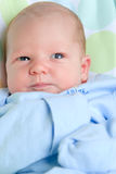 Nieuw - geboren jongen Royalty-vrije Stock Fotografie