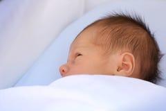 Nieuw - geboren slaap stock afbeelding