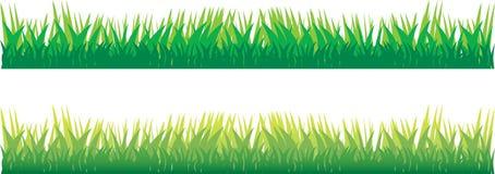 Nieuw gras stock illustratie
