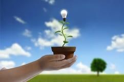 Nieuw Groen vernieuwbaar en Duurzaam Energieconcept stock fotografie