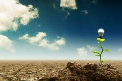 Nieuw Groen vernieuwbaar en Duurzaam Energieconcept royalty-vrije stock afbeelding