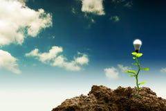 Nieuw Groen vernieuwbaar en Duurzaam Energieconcept stock afbeelding