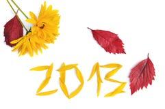 Nieuw jaar 2013 Stock Fotografie
