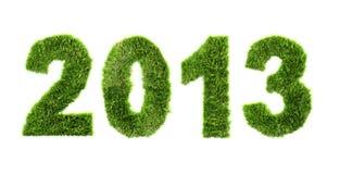 Nieuw jaar 2013 - ecologieconcept Stock Foto