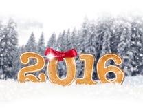 Nieuw jaar 2016 Stock Fotografie