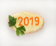 Nieuw jaar 2019 Royalty-vrije Stock Afbeeldingen