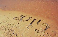 Nieuw jaar 2015 geschreven op zandig strand retro gefiltreerd beeld Stock Foto's