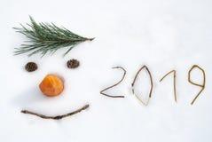 2019 Nieuw jaar grappig gezicht royalty-vrije stock foto