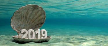 2019 Nieuw jaar in oestershell onderwater, op de zeebedding 3D Illustratie royalty-vrije illustratie
