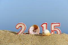 Nieuw jaar 2015 teken met zeeschelpen Stock Afbeeldingen