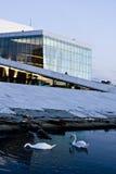 Nieuw Ontwerp 1 van de Opera royalty-vrije stock fotografie
