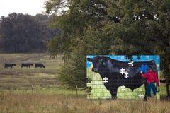 Nieuw schilderen van mens het schilderen koe op gebied met drie echte koeien, royalty-vrije stock afbeelding