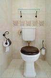 Nieuw toilet Royalty-vrije Stock Afbeelding
