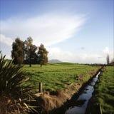 Nieuw Zeeland stock fotografie