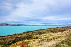 Nieuw Zeeland 78 stock afbeelding
