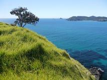 Nieuw Zeeland: De Eilanden van Cavalli van de Matauribaai Stock Afbeelding