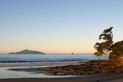 Nieuw Zeeland: het gelijk maken bij strand met eiland Stock Foto