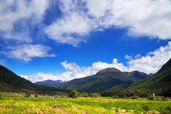 Nieuw Zeeland, zet het Nationale Park van Aspring op Stock Foto
