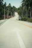Nieuwe aangelegde weg in wildernissen stock foto