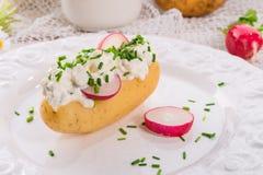 Nieuwe aardappels met de lentegestremde melk Stock Foto's