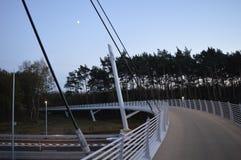 Nieuwe brug in de maneschijn Stock Foto's