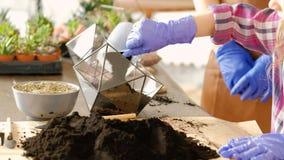 Nieuwe creatieve de hobby hoofdklasse van Diyflorarium stock video