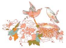 Nieuwe familie van vogels royalty-vrije illustratie