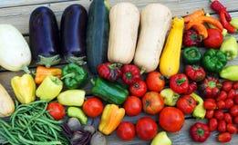 Nieuwe geplukte verse groenten stock fotografie