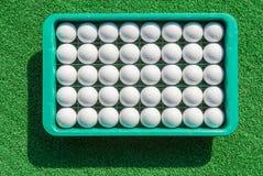 Nieuwe golfballen in dienblad op groen gras voor golfpraktijk Stock Fotografie