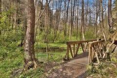 Nieuwe houten voetgangersbrug in de vallei van de lentepeklo op Tsjechisch toeristengebied Machuv kraj Stock Foto's