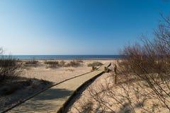 Nieuwe houten weg van het bos van het strandduin met pijnbomen leiden en wit die dat naar de Oostzeegolf wordt verzonden - Vecaki stock foto's