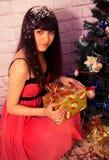 Nieuwe jaar en Kerstmis Royalty-vrije Stock Fotografie
