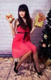 Nieuwe jaar en Kerstmis Stock Afbeelding