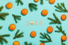 Nieuwe jaarsamenstelling 2018 Het Kerstmiskader met mandarijnen, spar vertakt zich, en houten van letters voorziende 2018 met gli Stock Fotografie