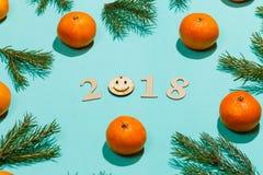 Nieuwe jaarsamenstelling 2018 Het Kerstmiskader met mandarijnen, spar vertakt zich, en houten van letters voorziende 2018 met gli Royalty-vrije Stock Afbeeldingen