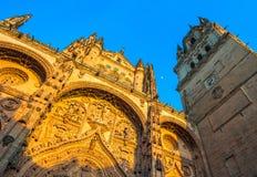 Nieuwe kathedraal of Catedral Nueva in Salamanca, Spanje Royalty-vrije Stock Afbeelding