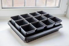 Nieuwe lege plastic containers voor zaailingen op de vensterbank Royalty-vrije Stock Fotografie