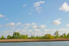 Nieuwe Maas Stock Fotografie
