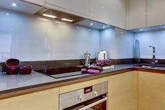 Nieuwe moderne keuken Royalty-vrije Stock Afbeeldingen