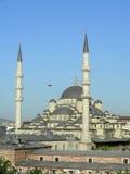 Nieuwe Moskee in Istanboel Stock Foto
