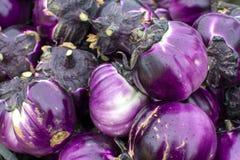Nieuwe oogst van de smakelijke Siciliaanse ronde groenten van Altvioolaubergines op markt stock foto